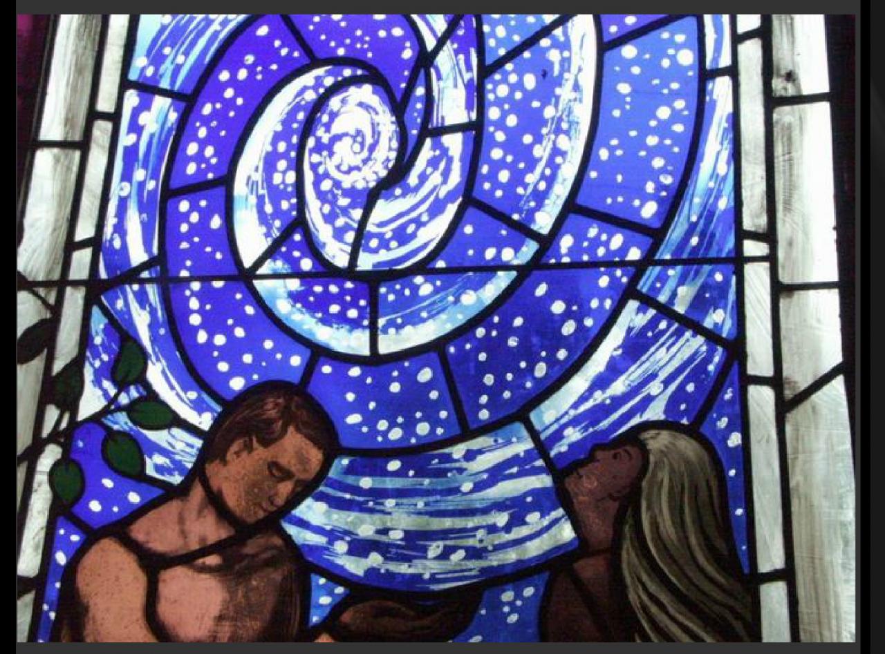 Cosmos, Weyburn Catholic, Sask.